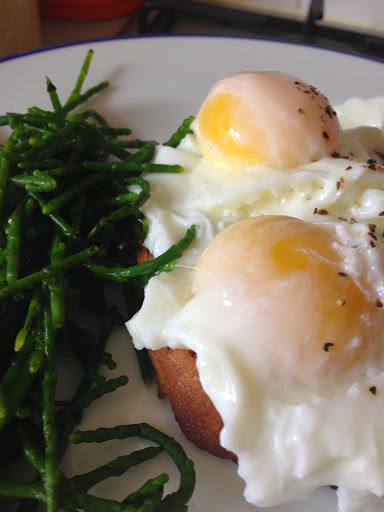 poached egg on granary toast and samphire